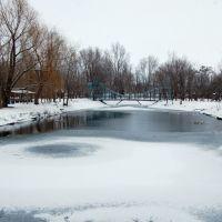 пруд в бывшем зоопарке, Станично-Луганское