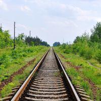 886 км Валуйки-Должанская, Старобельск