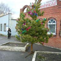 Магазин Людмила, Троицкое