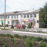 Здание ДОСААФа в п.г.т. Троицкое, Троицкое