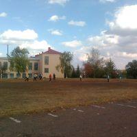 Стадион (Гимназия), Троицкое