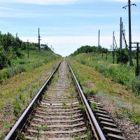 791 км Валуйки-Должанская, Троицкое