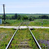 Железнодорожный переезд, Троицкое