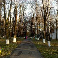 Наш парк, Борислав