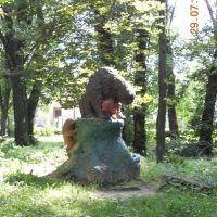 """Парк , пам""""ятник невідомим ведмедям, Борислав"""