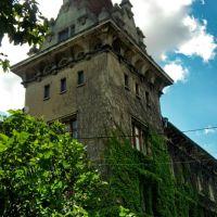 Башня, Броды
