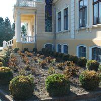 Палац графів Тишкевичів, Броды