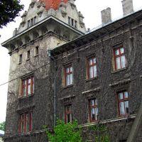 Здание бывшего поветового суда,1911г,все укрыто диким виноградом, Броды