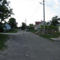 м.Буськ вул.Грушевського.липень 2010р., Буск