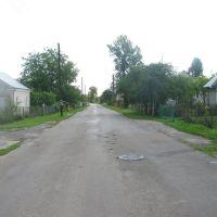 Серпень 2011р., Буск