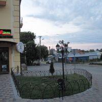 Виники, базар (Vynyky, bazar/market), Винники