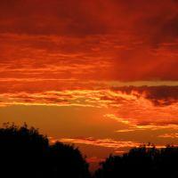 Світанок (sunrise), Винники