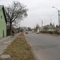Винники, вул. Галицька / Vynnyky, Halytska str., Винники