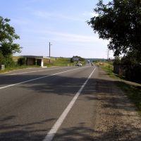Кільцева дорога, Винники