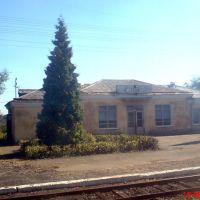 2008.08.19 | Станция Горняк, Горняк