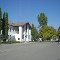 music school, Добротвор