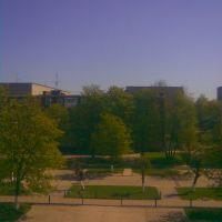 З Вікна Школи, Добротвор
