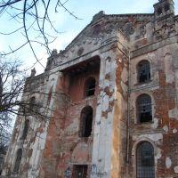 Хоральна синагога (19 ст.) * Choral synagogue, Дрогобыч