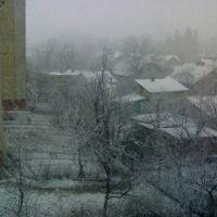 Сніг, Стрийська 62, Дрогобыч