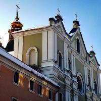 Вознесенский костел, Дрогобыч