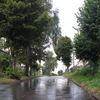 Urickogo, Жидачов