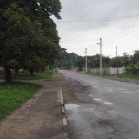 Жидачів, автовокзал дорога в центр, Жидачов