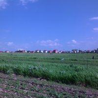 East Pustomyty, Жолкиев