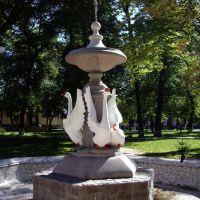 Старый фонтан, Золочев