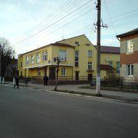 Будинок культури, Каменка-Бугская