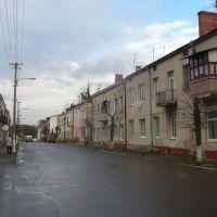 Uliczka przy centrum w Kamionce Buzkiej na Ukrainie, Каменка-Бугская