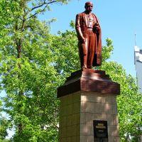Памятник Кобзарю в парке им. Т.Г. Шевченко., Каменка-Бугская