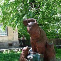 Мишки- советские...,как их много на Западной Украине., Каменка-Бугская