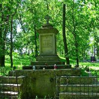 Гробница Bronislaw Wislocki 1864-1928гг.На городском кладбище 16-20ст., Каменка-Бугская