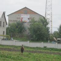 """Нова Пошта"", Мостиска"