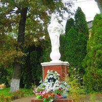 Фігурка/статуя Матері Божої у Мостиськах, Мостиска