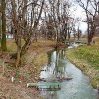 река Свинья, Нестеров