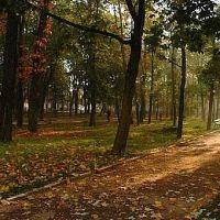 Park, Николаев