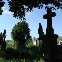 Polski cmentarz w Przemyślanach, Перемышляны