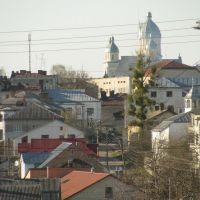 Вид на місто з костела, Перемышляны