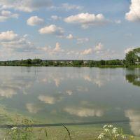 ставок в Лісневичах, Пустомыты