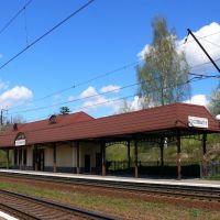 Залізничний вокзал, Пустомыты