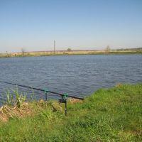 Карпове озеро, Пустомыты