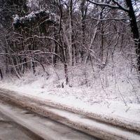 Дорога до лікарні, Рава Русская