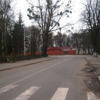 Біля поліклініки, Радехов