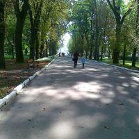 Парк, Радехов