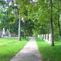 Кладовище біля лікарні, Радехов