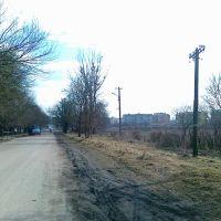 Вулиця Витківська, Радехов