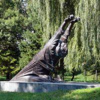 Памятник жертвам терору, Самбор