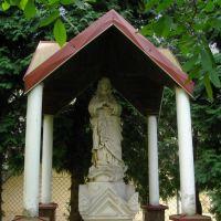 ►Świątynia, Самбор