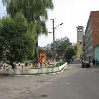 вул.Григоренка (Сокаль, Україна), Сокаль